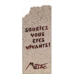 Miss Tic - Souriez vous...