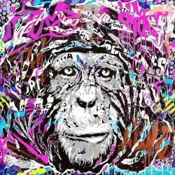 Litho.Online Jo Di Bona - Print Splash Magic Monkey