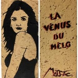 Miss Tic - La Vénus du Mélo - pochoir sur brique - 22x10x5cm - 2017