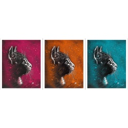 Litho.Online C215 - Felix (Pack 3 couleurs Fuschia, Cyan et Orange)