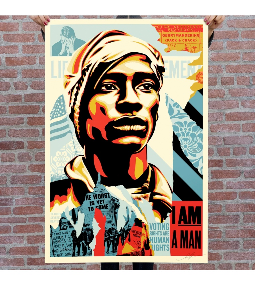 Litho.Online Shepard Fairey - Voting rights are human rights