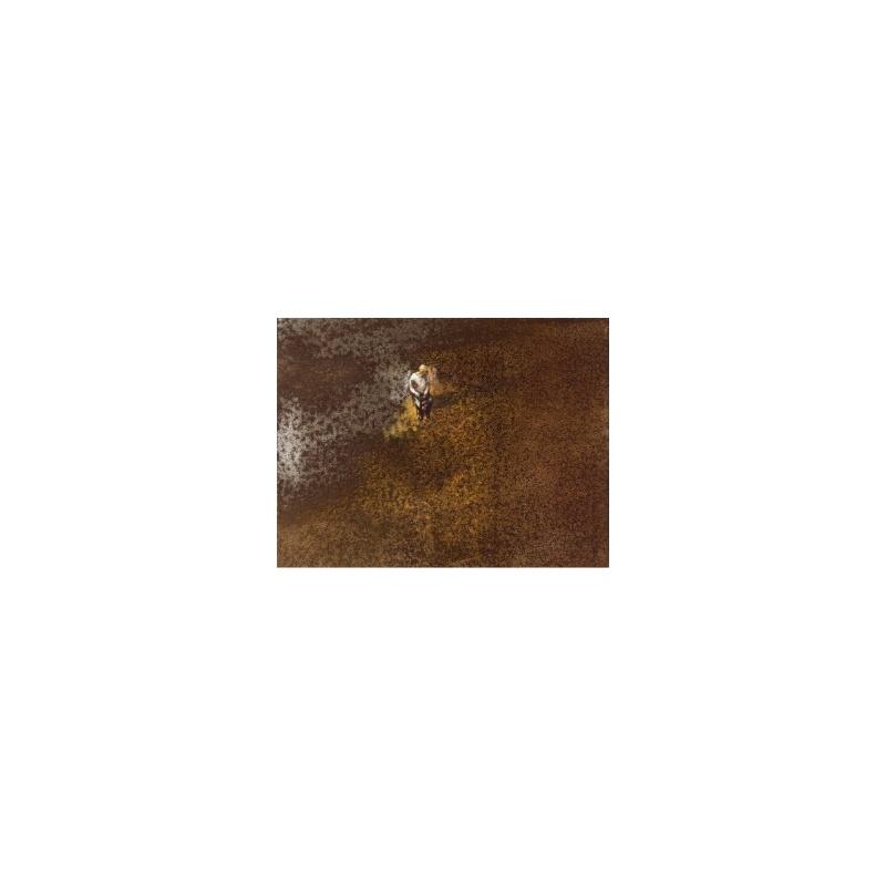 Philippe Hérard - Cent-Titres - Estampe signée numérotée 20ex- Museum 350g- 30x40cm 2018