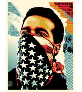 Shepard Fairey - American Rage